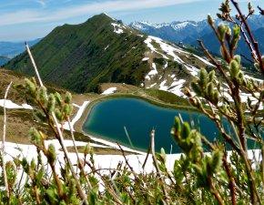 Frühling rund um den Riezler Alpsee