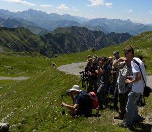 Spektivwanderung am Nebelhorn