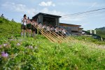 Alphornspieler beim Bergblumenfest