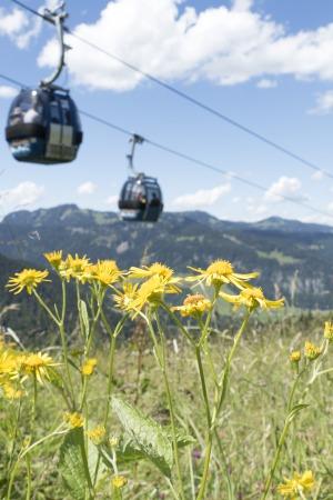 Söllereckbahn über der Blumenwiese
