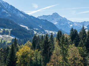Herbst in Tiefenbach