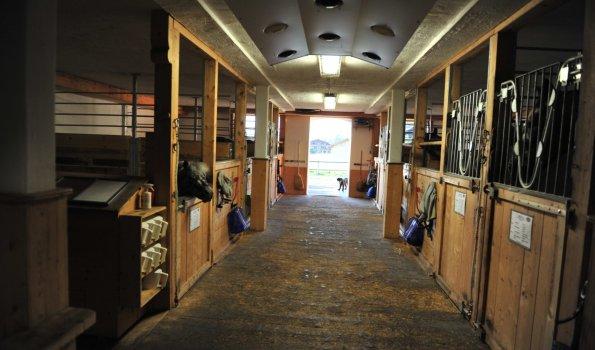 Stall mit Pferdeboxen