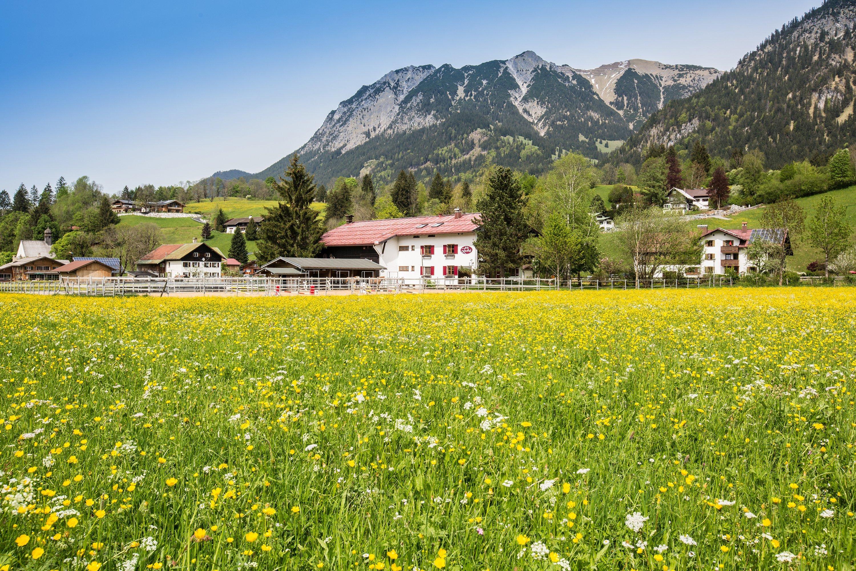Ferienwohnung der Landhof / 4 Lavendel (2397431), Oberstdorf, Allgäu (Bayern), Bayern, Deutschland, Bild 7