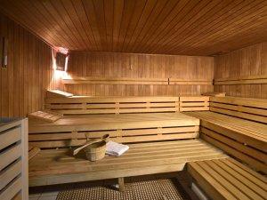 Sauna DIE GAMS