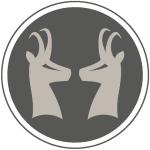 Icons die Gams15