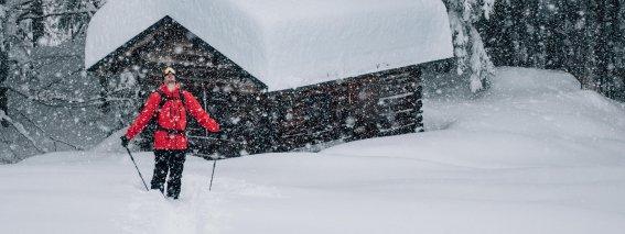 Ski Alpin - Schneefall Hütte