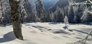 Landschaft Neuschnee