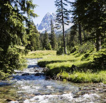 Erlebe die Natur bei Deinem Aufenthalt im Explorer Hotel