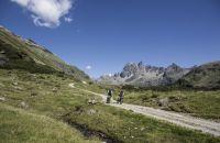 Rasant mit dem Mountainbike den Berg hinunter
