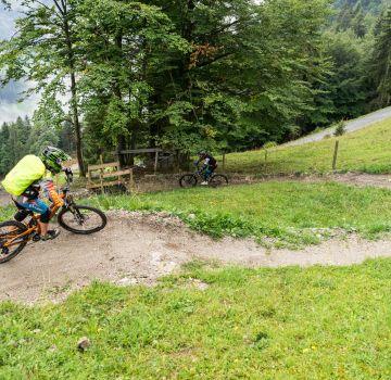 Der Lisi Osl Trail am Gaisberg
