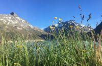 Silvretta Stausee auf der Bielerhöhe im Montafon