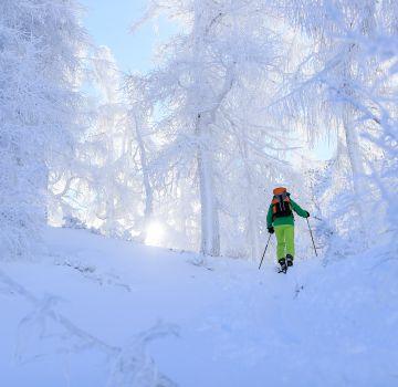 Skitour auf den Stubwieswipfel