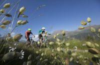 Mountainbiken am Brunnenberg bei Sölden