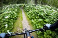 Trailride durch die Montafoner Bergwelt