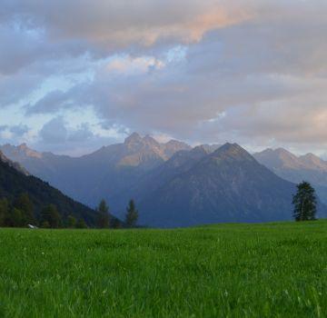 Allgäuer Alpen im Abendlicht