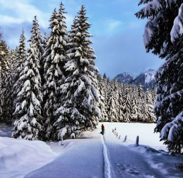 Schneeschuhwanderung mit ALPINZEIT im Ötztal