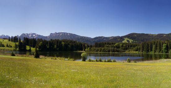 Perfektes Ausflugsziel im Sommer ist der Köglweiher