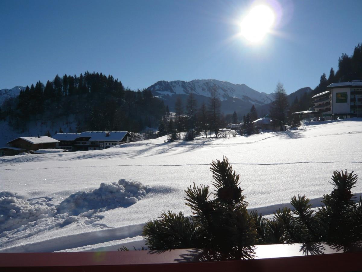 Aussicht vom Falkenhof