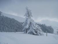 ...mal so richtig Winter ...