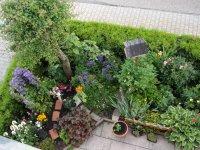 Vorgarten, Blick v. Balkon
