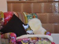 und mein Lieblingssessel - mit knalligblumigen Farben und kuschligem Flair in der beleuchteten Leseecke.