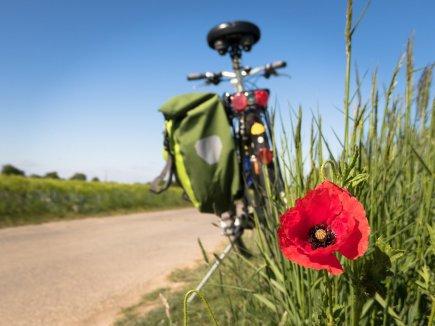 Radfahren in Oberschwaben