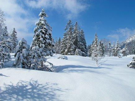Schneereicher Winter im Allgäu