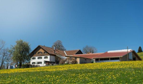 Ferienhof Maidel
