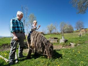 Kleiner Spaziergang auf Pony