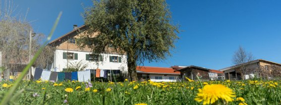 Ferienhof Maidel im Frühling