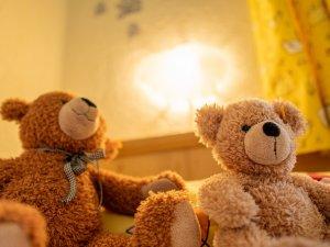 Ferienhaus-viehweid teddy