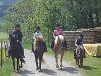 Ausritt mit unseren Pferden