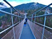 Bridge-4645094 1920
