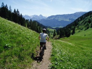 Mountainbike-Touren