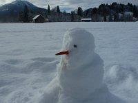 Winter am Delleberg