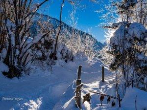 Oberstdorfer Winterlandschaft