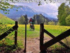 Im Mai wartet eine Belohnung am Ende unseres Lieblings-MTB-Trails
