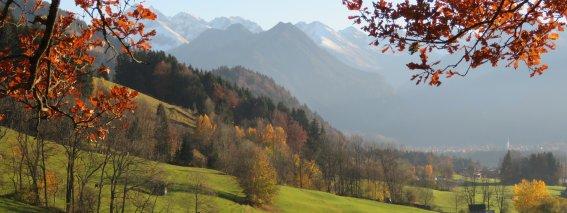 Herbst IMG 0317--