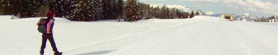 Seealpe-Winterwandern