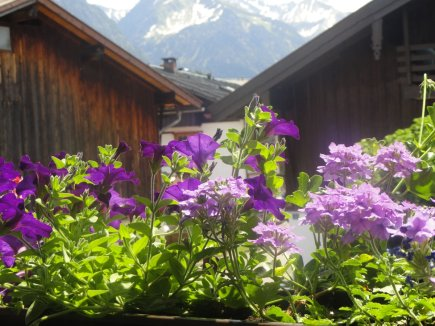 Blick vom Balkon Ferienwohnung 1
