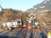 Forstbetrieb Kiechle