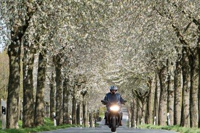 Motorrad-WS neu