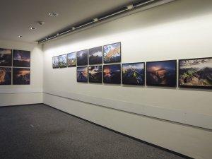Ausstellungen Sport - Foto: René Zieger