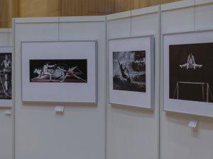 DVF Fotowettbewerb - Foto: René Zieger