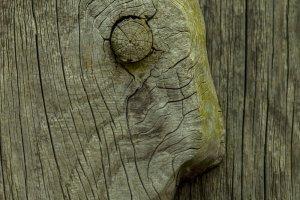Zen Art WabiSabi - H. J. Netz (5)
