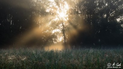 Naturfotografie, Andreas Geh