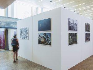 Ausstellung Anatol Kotte - Bild: René Zieger