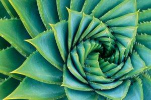 Micha Pawlitzki - die Macht der Farben