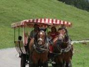 Stellwagenfahrt nach Spielmannsau
