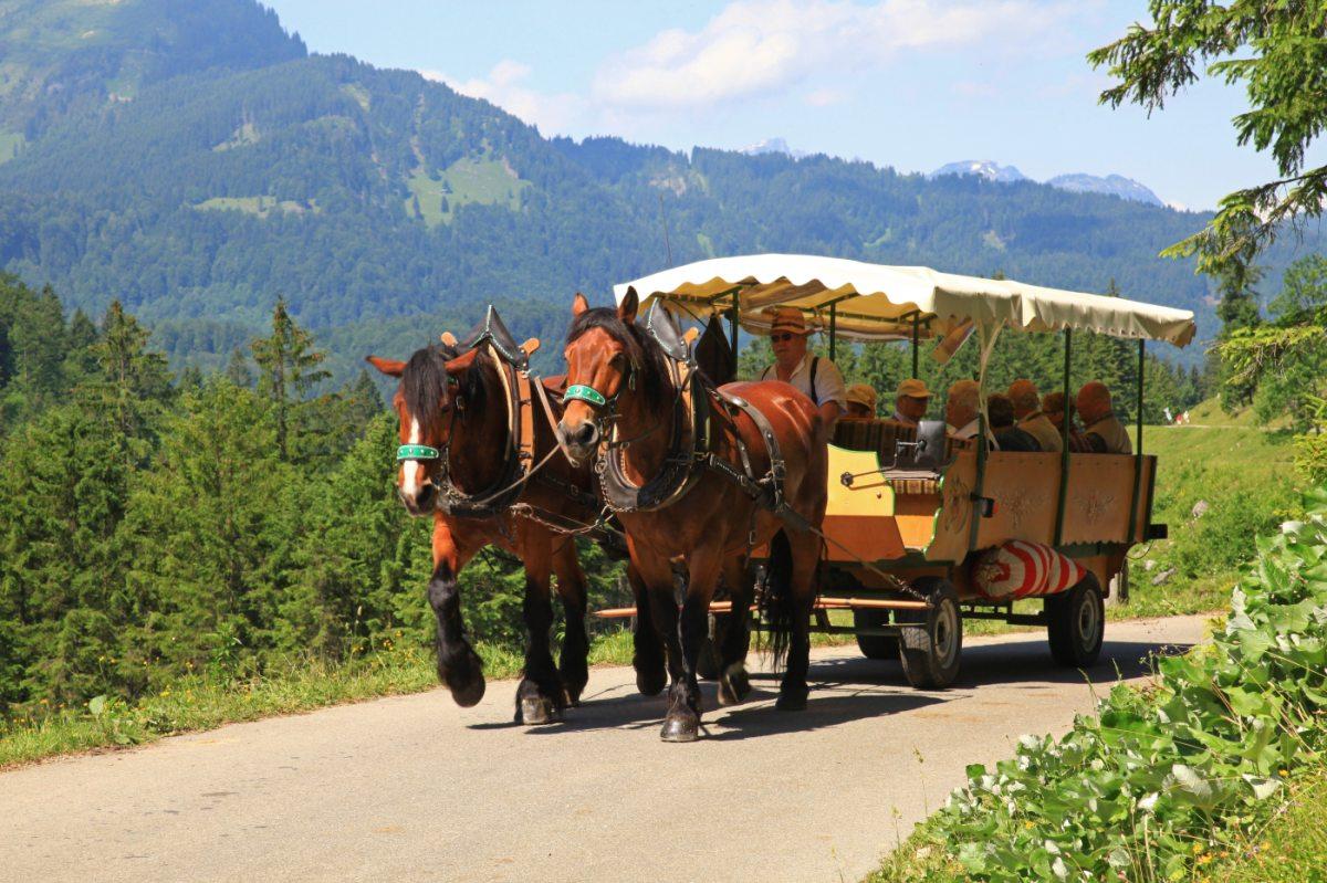 Kutschfahrt in die Oberstdorfer Täler